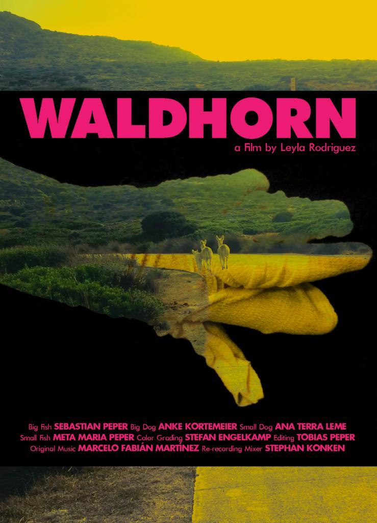 """""""WALDHORN"""" 2020, Leyla Rodriguez"""